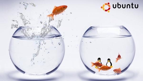 fishy_ubuntu wallpaper